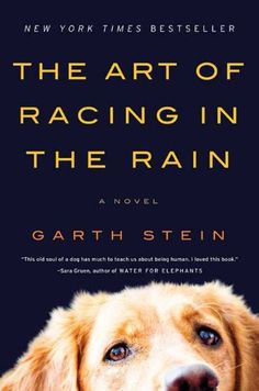 I cried like a baby reading this.  In public through numerous airports.  The Art of Racing in the Rain