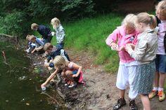 Altijd goed: Een dagje op ontdekkingstocht in de natuur. Start bij Bezoekerscentrum Mar en Klif, haal een zoekkaart en ontdek wat er allemaal kruipt, zwemt en vliegt in het Nationaal Landschap Zuidwest Friesland. Foto: Jan Tijsma