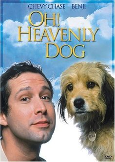 Oh Heavenly Dog 1980