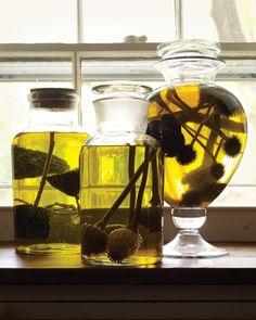 "Martha's lovely ""specimen/potion display"" jar idea"