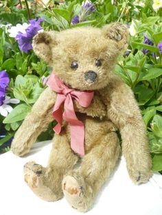 Wonderful 8  antique Steiff bear  C1909
