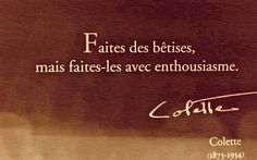 """translation: """"do stupid things but do them with great enthusiasm."""" j'adore!"""