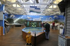 Ponce Inlet Marine Science Center
