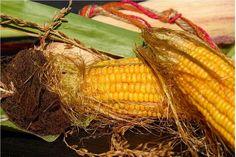 1208 非 遺伝子組み換え作物 の選別機構 農協は ネットだと悪の権化みたいに言う人も多いけど 実は米国で「全農グレイン」という農協の子会社が 日本に入ってくるトウモロコシなどの遺伝子組み換え作物と 非遺伝子組み換え作物を選別し管理している。  「全農グレイン」が管理することで 無闇に日本に遺伝子組み換え作物ばかり入って来ないという側面もあるんですね。