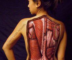 Anatomy illustration by Danny Quirk.