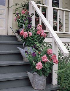 Pink flowers in watering cans