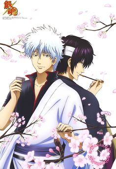 Gintama (銀魂°)Gintoki Sakata enjoys the blossoms of spring with Takasugi Shinsuke in the PASH! Magazine (Amazon US | JP) poster from the April issue, illustrated by animation director Yuri Ichinose (一ノ瀬結梨).