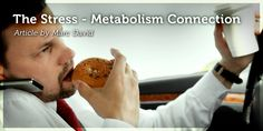 The key to understanding the stress metabolism is the central nervous system (CNS). The portion of the CNS that exerts the greatest influence on...