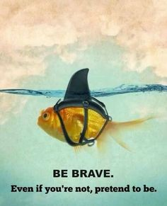 Hahaha! I need to send this to one of the gals in my team! Be brave!