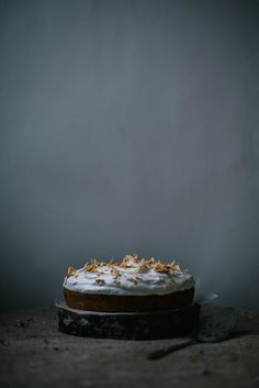 Coconut Tres Leches Cake via {local milk}