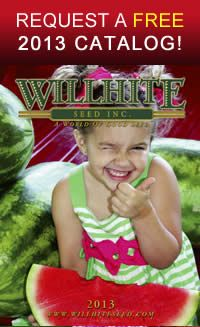 Willhite Seed Inc. a world of good seed...http://www.willhiteseed.com/index.php