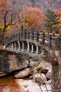 Bridge in the beautiful Seoraksan National Park in South Korea. Rocks look really familiar. Parque Nacional Seoraksan, Seoraksan National Park, Republik Korea, Autumn In Korea, Pont Paris, Nature Photography, Travel Photography, Old Bridges, Autumn Scenes