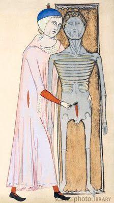 La Autopsia en el Arte: Ilustración para Anatomía, (1345),un texto de Guido da Vigevano (1280-1349)
