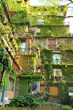 Would you live here? #urban #green