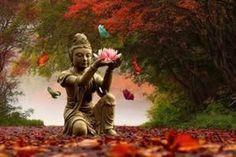 Frases e Reflexões de Tenzin Palmo, do ocidente para o budismo.