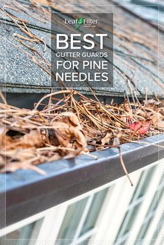 Do you have problems with pine needles in your gutters? Read this article to find out about the best gutter guards for pine needles!
