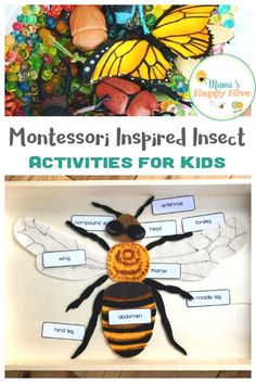 "Montessori inspired insect activities for kids that include: hatching butterflies, examining ""real"" insects, insect puzzles, fine motor work, & more! Insect Activities, Science Activities For Kids, Preschool Science, Preschool Lessons, Kindergarten Activities, Spring Activities, Dinosaur Activities, Science Classroom, Classroom Themes"