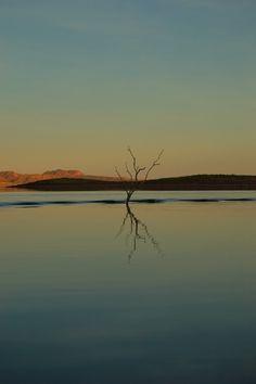 Reflection, Lake Argyle