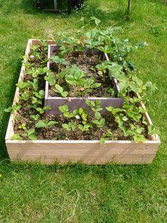 Strawberry Pallets Pyramide - Pyramide de fraisiers en Palettes #DIY, #Garden, #Pallets, #Planter