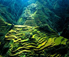 Home is where your heart is.  (My house is 30mins away..but close enough lol)  Banaue Rice Terraces, Philippines
