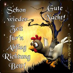 Good Night Flowers, German Quotes, Good Morning Sunshine, Galo, Man Humor, Good Day, Usmc, I Am Awesome, Funny Quotes