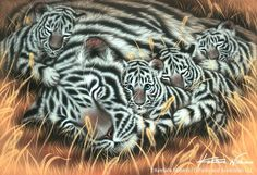 """Afternoon Nap"" White Tigers, Acrylic on canvas, 2009 https://www.facebook.com/kentaronishinoart/photos/a.568918579853716.1073741828.568913263187581/938045796274324/?type=3"
