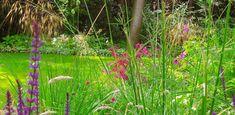 villatuin Bilthoven - Denkers in TuinenDenkers in Tuinen | Ontwerpers van stijlvolle en tijdloze tuinen