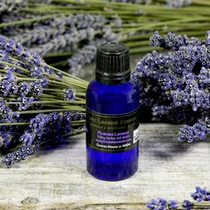 We are distilling gallons upon gallons of lavender essential oil at the farm right now. Did you know that it has many therapeutic uses and is one of the few essential oils that can be used directly on the skin? Here are a few of our favorite uses... As a topical pain reliever and antiseptic, apply a few drops to treat cuts, burns, abrasions, insects bites and stings. Dab a drop on the upper lip at bedtime as a soothing sleep inducer.