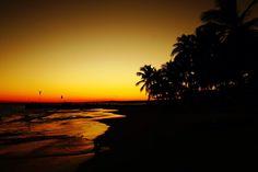 Windsurf el Yaque Palm tree isla Margarita Venezuela sunset
