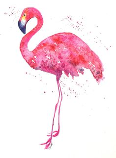 Originele flamingo aquarel-flamingo painting-flamingo