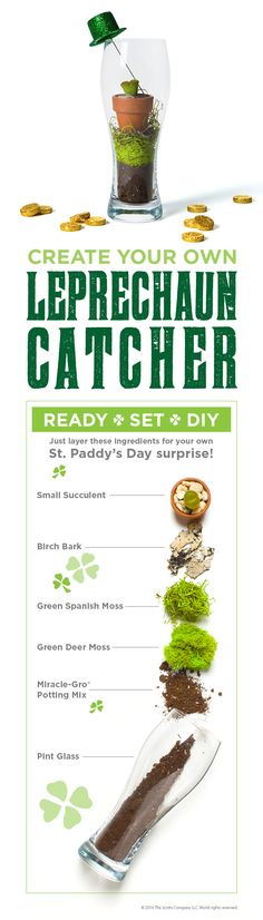 Celebrate St. Patrick's Day the right way — by creating your own Leprechaun Catcher.   #MiracleGro #StPatricksDay #Terrarium #DIY