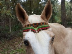 Seminole Inspired Seed Beaded Equine Browband  by MyBuddyBling
