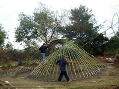 Image 3 of 29 from gallery of Bamboo Structure Project / Pouya Khazaeli Parsa. Photograph by Pouya Khazaeli Parsa Pine Garden, Bamboo Garden, Temporary Architecture, Bamboo Architecture, Architecture Design, Bamboo Structure, Timber Structure, Bamboo Building, Jungle Life