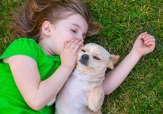 15 razões pelas quais os cachorros são os melhores amigos do mundo