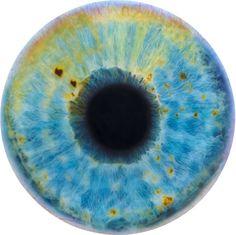 Otro precioso ojo pintado por Marc Quinn