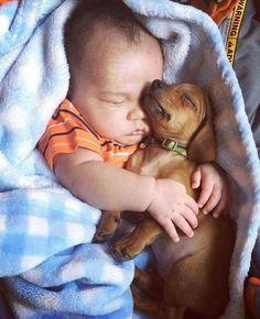 Unconditional love #dog #pet http://www.nojigoji.com.au/