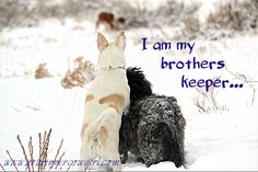 I am my brothers keeper...