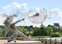 Dramatic Stainless Steel Wire Fairies by Robin Wight wire sculpture fairies dandelions