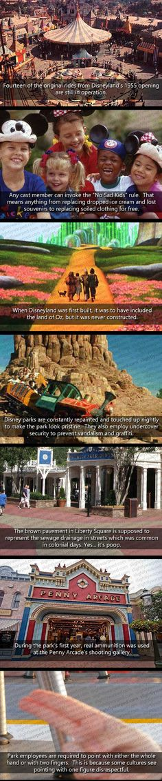 Things You Don't Know About Disney World