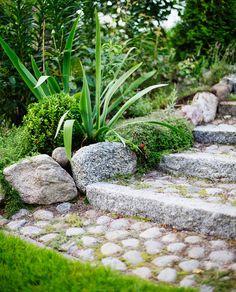 Kaunis kivipuutarha vaatii työtä kuten mikä tahansa puutarha.