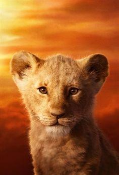 The Lion King poster, t-shirt, mouse pad Lion King Poster, Lion King Movie, Lion King Simba, Disney Lion King, Images Disney, Disney Pictures, Disney Art, Disney Rapunzel, Disney Ideas