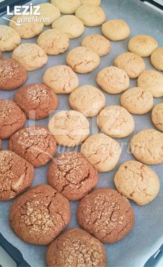 Cookies, Desserts, Food, Crack Crackers, Tailgate Desserts, Deserts, Biscuits, Cookie Recipes, Meals