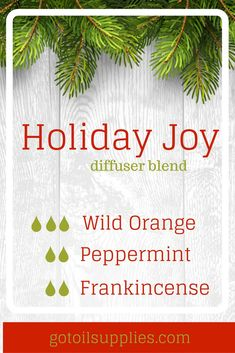 Holiday Joy Diffuser Blend Winter Diffuser Recipe With Orange, Peppermint and Frankincense Essential Oils. gotoilsupplies.com