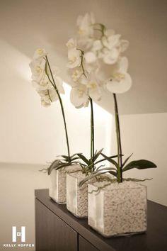 Luxury White Pebbles Interiors That Will Blow Your Mind - storczyki - Orchideen Orchid Flower Arrangements, Orchid Plants, Kelly Hoppen Interiors, Deco Nature, White Pebbles, Deco Floral, White Orchids, Diy Garden Decor, Plant Decor
