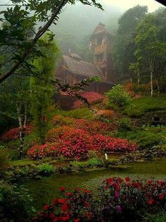 Beautiful house in the morning mist!