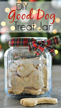 DIY Glass Etched Dog Treat Jar. Great DIY gift for those dog lovers! #christmas #gift #inspiration