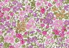 "LIBERTY liberty prints and Japanese tanaron fabric DC27842-J15A (eternal) ""The Secret Garden] (the secret garden)"