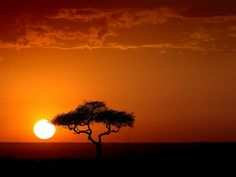 Typical sunset in Africa. Kenyan sunset in Masai Mara. Last day of my safari trip March And yes - the colors where as shown here. Beautiful World, Beautiful Places, Romantic Places, Beautiful Scenery, Amazing Places, Beautiful Pictures, Oh The Places You'll Go, Places To Visit, African Sunset