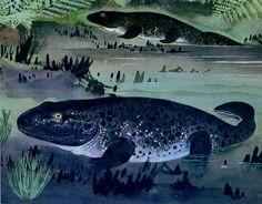 Maurice Wilson - Ichthyostega