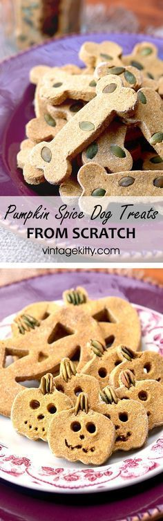 Pumpkin Spice Dog Treats Don't forget your dog friends this Halloween! Show your furry companions how much you love them with these gluten-free Pumpkin Spice Dog Treats. Pumpkin Dog Treats, Diy Dog Treats, Homemade Dog Treats, Dog Treat Recipes, Dog Food Recipes, Fall Recipes, Sin Gluten, Dog Cookies, Dog Items